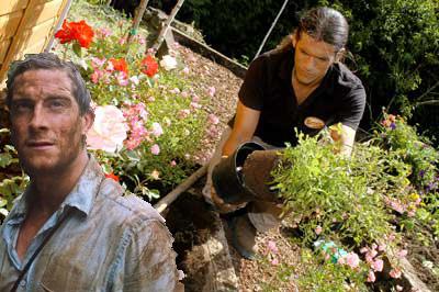 """""""Esta planta nos servirá como refugio para el invierno"""""""